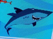 Stanley Spot-Tail Shark