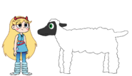 Star meets Domestic Sheep
