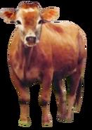 Cow (Little Einsteins)