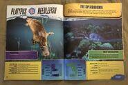 Predator Splashdown (24)