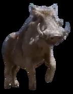 Pumbaa (2019) (V2)