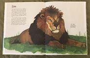 The Dictionary of Ordinary Extraordinary Animals (29)