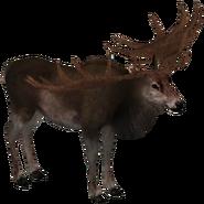 ZT Irish Elk (V2)