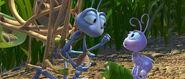 Bugs-life-disneyscreencaps.com-847