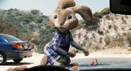 E.B. the Easter Bunny