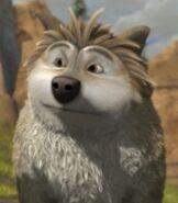 Mooch the Wolf