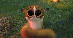 Mort (Madagascar).jpg