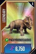Pachyrhinosaurus JWTG