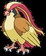 Pidgeot rosemaryhillspokemonadventures