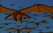 Pirate Dragons