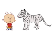 Stanley Griff meets White Bengal Tiger