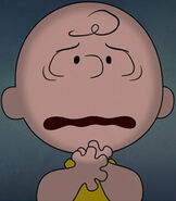 Charlie Brown in Who Are You, Charlie Brown?