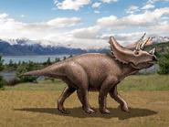 Dm triceratops