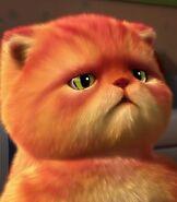 Mat in Fat Cat Mat