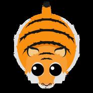 Mopeio Tiger