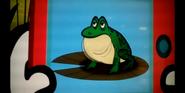 Nature Cat Frog