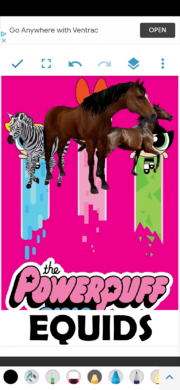 PPEquids2016 Poster.png