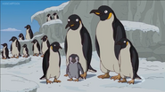 Simpsons Penguins