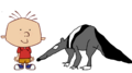 Stanley Griff meets Giant Anteater