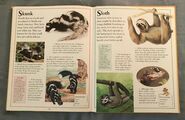 The Kingfisher First Animal Encyclopedia (65)