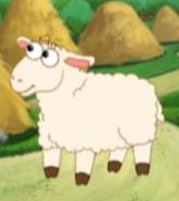 DTE Sheep
