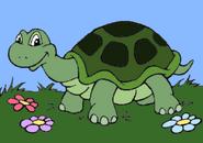 Jumpstart spanish turtle