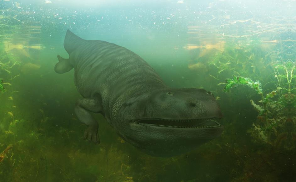 Metoposaurus