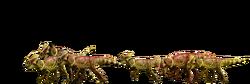 Microceratus-detail-header.png