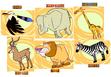 Stanleys-alphabet-adventure-african-plains-animals