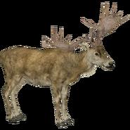 Irish Elk (ZT2)