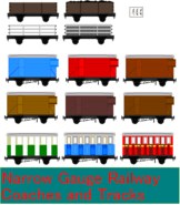 Nrrow gauge coaches and tracks