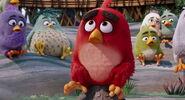 Angry-birds-disneyscreencaps.com-757