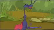 Gina the Giraffe Weevil