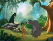 Jungle-cubs-volume01-baloo-mowgli-and-bagheera06