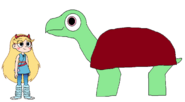 Star meets Aldabra Giant Tortoise