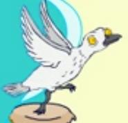 TWT Seagull