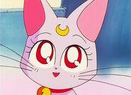 Diana by Sailor Moon
