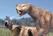 Male and female Smilodon fatalis