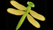 Safari Island Dragonfly