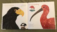 The Beak Book (7)