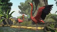 Zootycoon flamingo