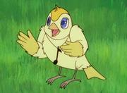 Cicci the bird.png