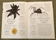 Creepy Crawlies (Over 100 Questions and Answers to Things You Want to Know) (1)