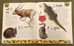 Endangered Animals Dictionary (1).jpeg