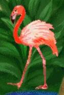 Flamingo-jumpstart-preschool