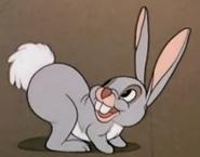 G-1941-04-18-rabbit