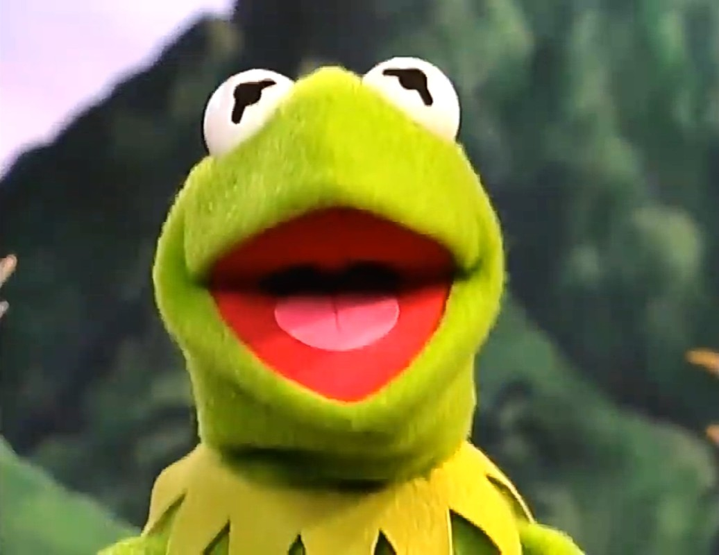Kermit the Frog(Winnie the Pooh)