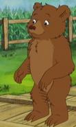 Little Bear TV