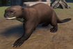 Otter, Giant (Planet Zoo)