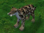 Zt2-cloudedleopard